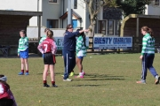 Primary Schools Rugby Day in creggs - March 2017